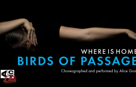 Where is Home: Birds of Passage