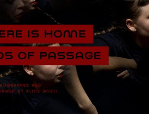 Where is home : birds of passage | NOV 1–17